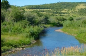 judith-river